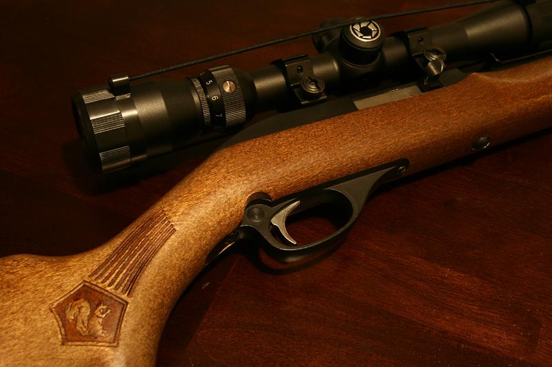 IMAGE: http://www.higherground4x4.com/forums/uploaded/Xterra/22_rifle.jpg